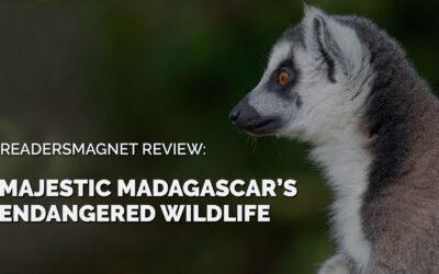 ReadersMagnet Review: Majestic Madagascar's Endangered Wildlife