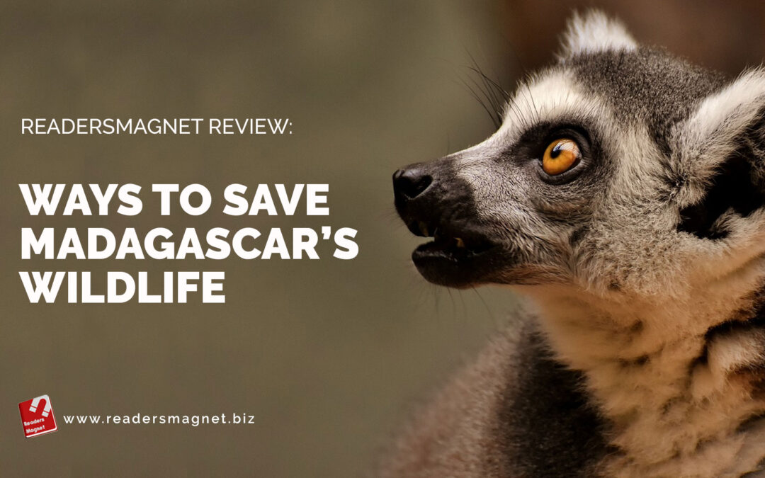 Ways-to-Save-Madagascars-Wildlife banner